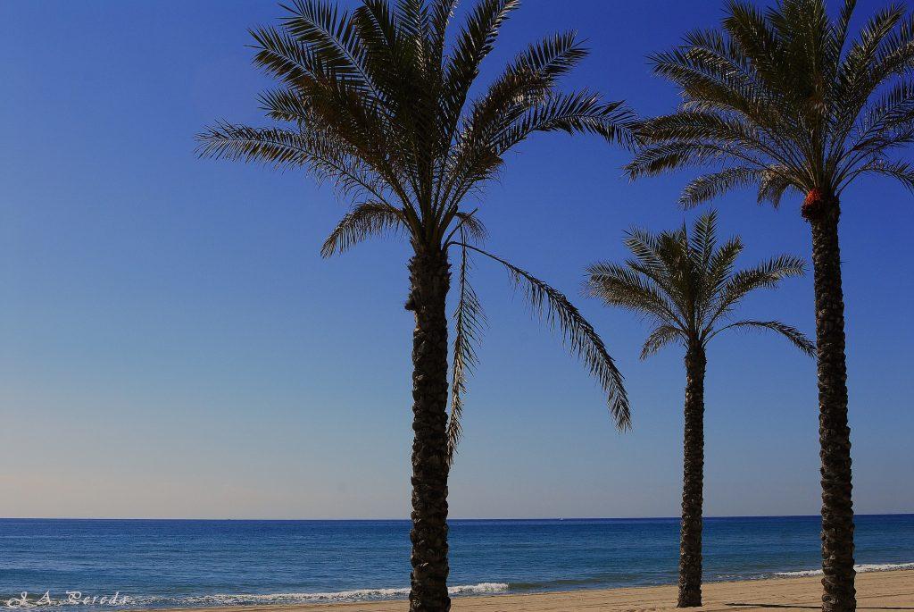 Playa Cerca de los apartamentos turísticos de Calafell